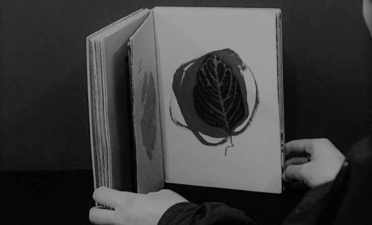 VI Encuentros sobre el libro de artista | Maialen Arocena – exposición guiada